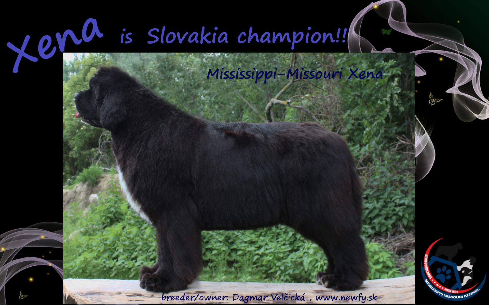 We have new Champion from Slovakia - Xena